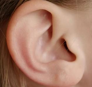 микробы на ушах