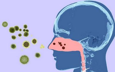 Инфекционные заболевания человека, вызванные микробами