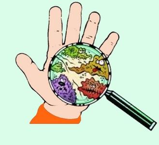 Микробы на человеческих  руках