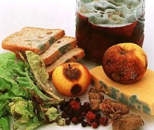 микробы в пище